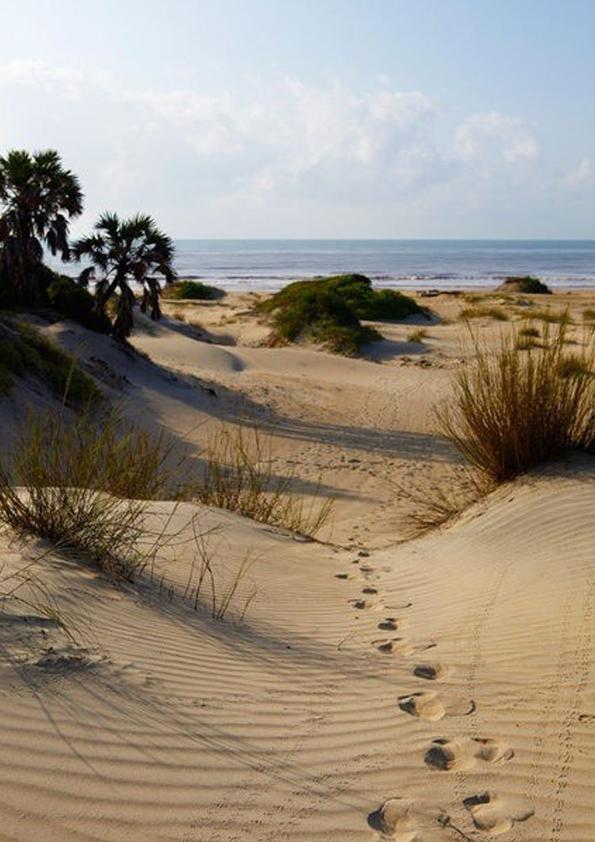 lavidacollage-bolso-diseño-exclusivo-edición-limitada-made-in-spain-beach-enjoy-summertime-love-style-bohochic-bohemian-katemoss-ellemacpherson-jane-birkin